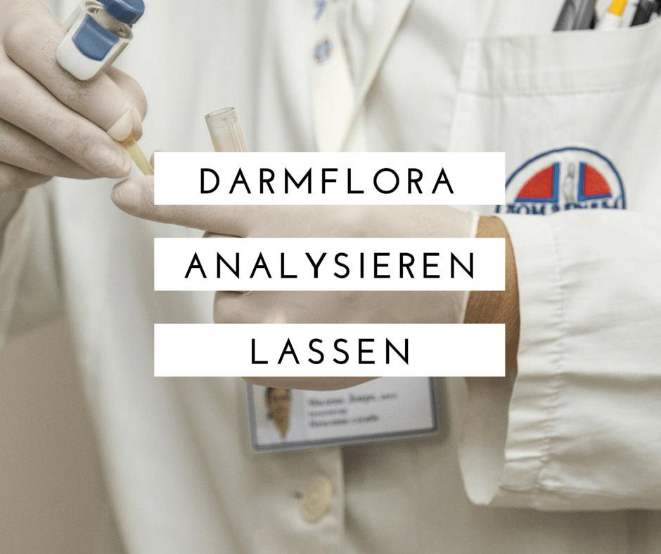 Darmflora analysieren
