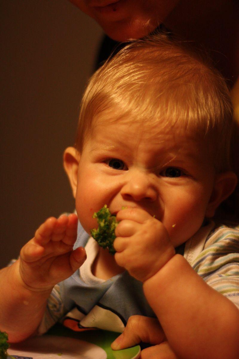 Beikost nach der TCM – Die 5 wichtigsten Tipps für entspanntes Zufüttern