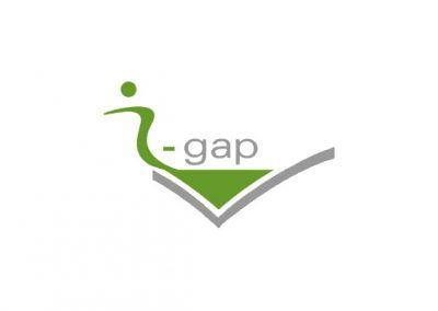 i-gap