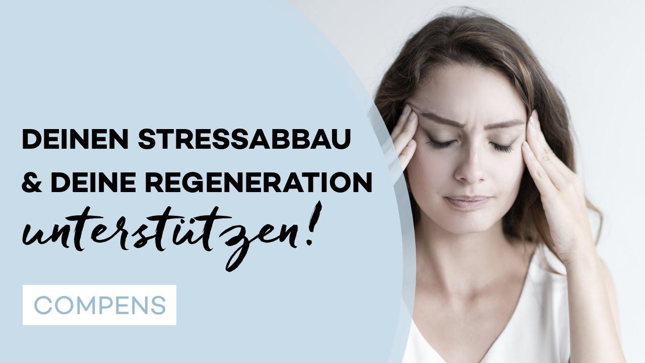 Gesunder Darm, schnellere Regeneration & Stressabbau durch Probiotika