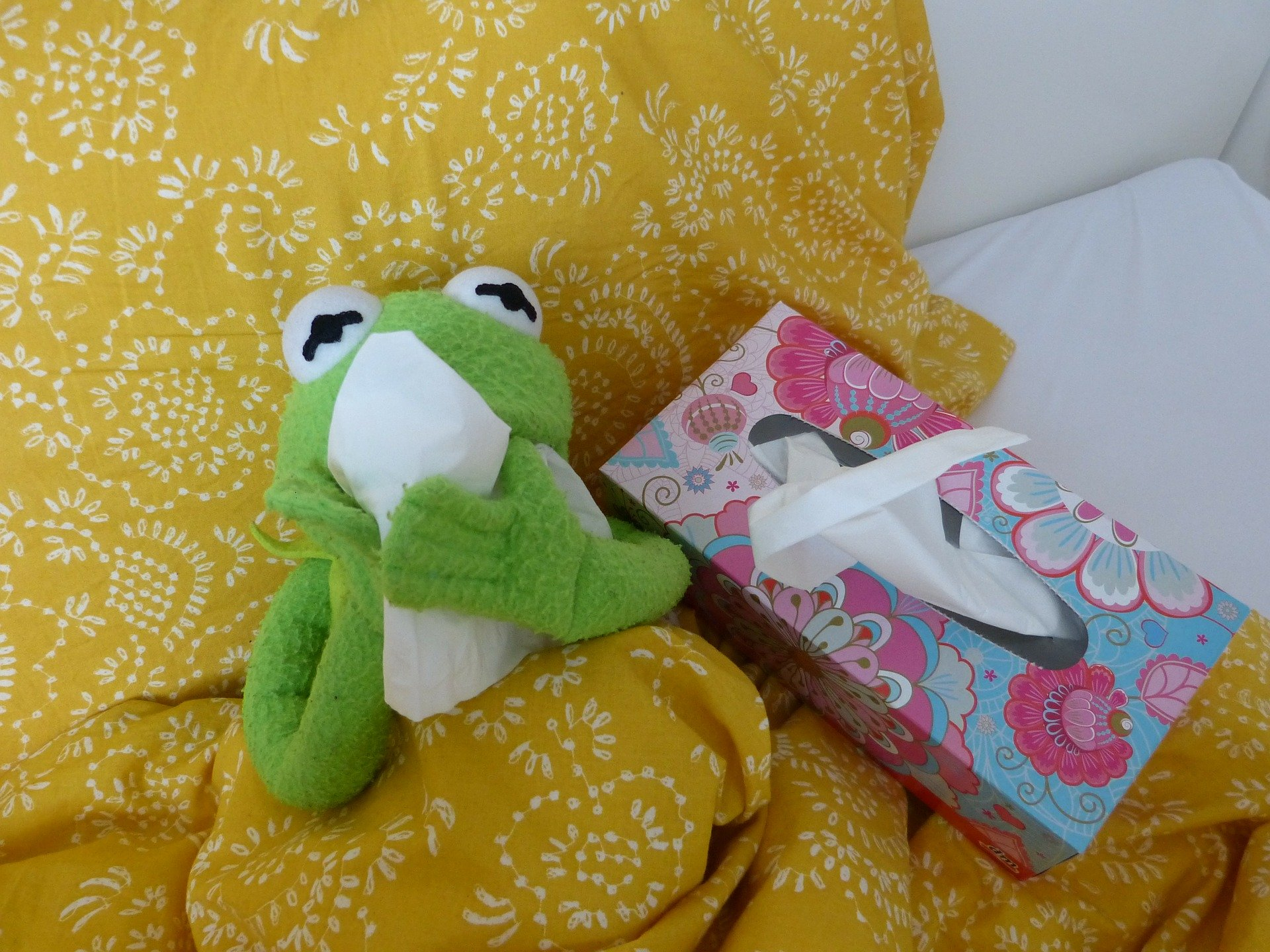 Frog doll Kermit with tissues