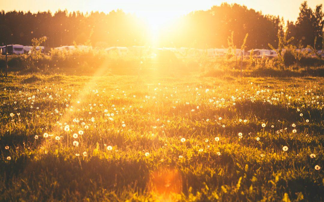 Licht – die vernachlässigte Säule der Gesundheit